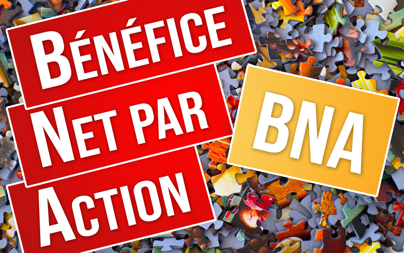 BNA, BPA, BNPA : Bénéfice Net par Action - Bourse